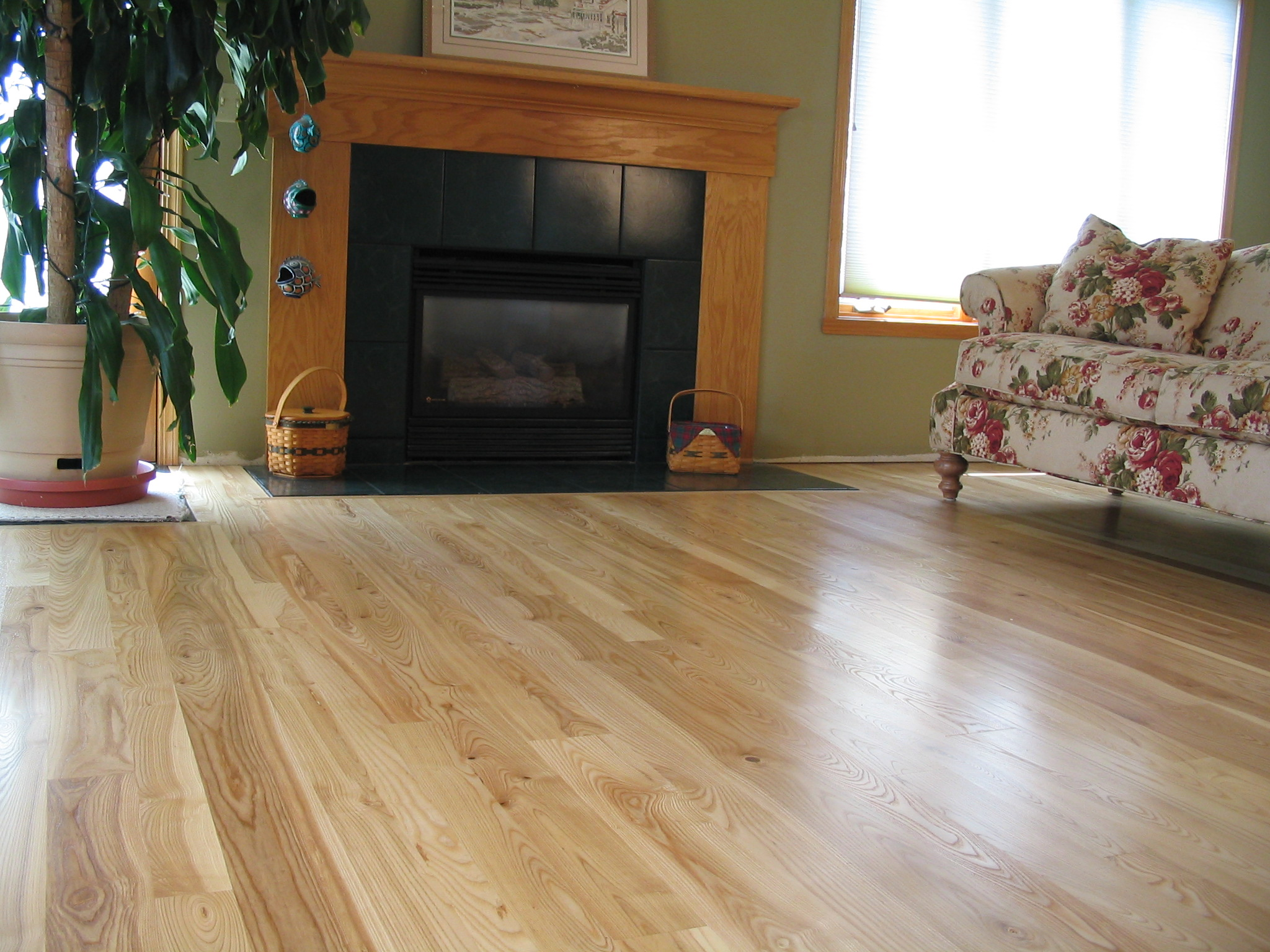 Ash hardwood flooring modern house for Ash hardwood flooring
